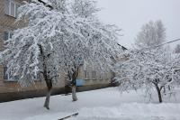 Зима 2017